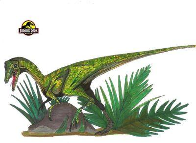 Compsognathus illustration 1