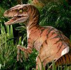 Jurassic-park-dinosaurs-wallpaper-for-1366x768-hdtv-14-354