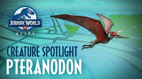 Creature Profile - Pteranodon