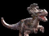 Allosinosaurus