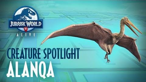 Creature Spotlight - Alanqa