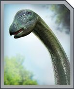 ApatosaurusProfile