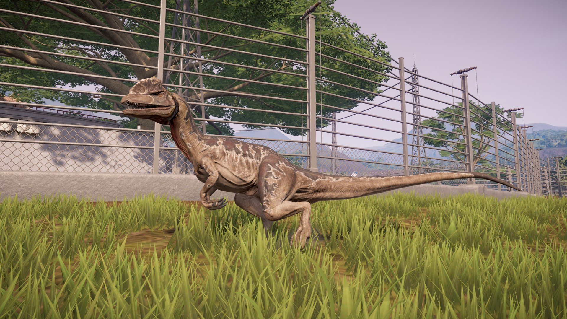 Dilophosaurus Paleontological Edits Blackfrog Jurassic World Evolution Mod Database Wiki Fandom Check out inspiring examples of jurassic_world_evolution artwork on deviantart, and get inspired by our community of talented artists. jurassic world evolution mod database