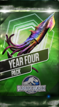 Year Four Pack