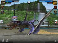 Dimorphodon in the arena