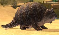Glyptodon 11-20
