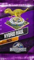Hybrid Haul Pack