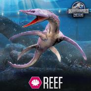 Reefposter