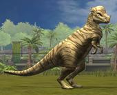 Pachycephalosaurus LVL20