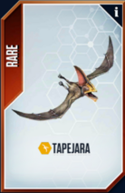 Tapejara Card