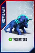 TriceratopsBrawlasaur