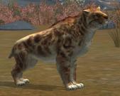 Smilodon LVL30