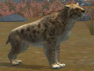 Smilodon LVL20