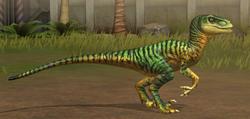 Velociraptor 21-30