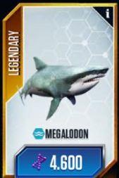 Megalodoncard