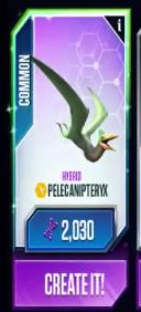 Pelecanipteryx