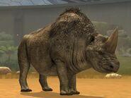Elasmotherium-10