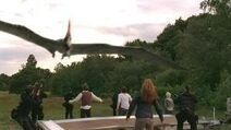 1.5 team and pteranodon