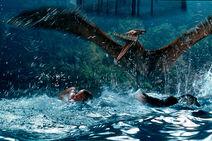 Jurassic park 3 005