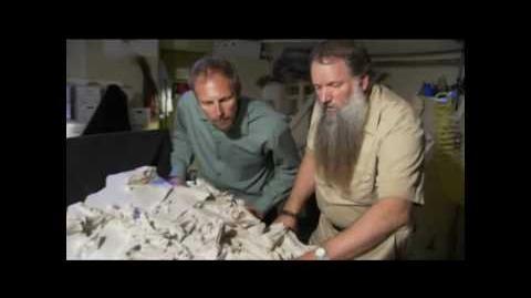 Prähistorisches Raubtier - Killerschwein Teil 2 5