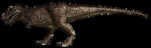 Tyrannosaurus Rex JFC