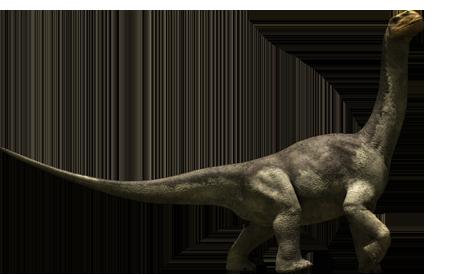 File:Camarasaurus.png