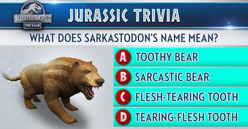Sarkastodon Trivia