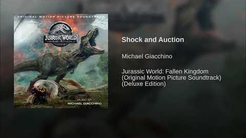 Shock and Auction