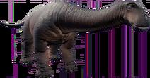 JWE Nigersaurus
