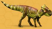 Microceratusfournew