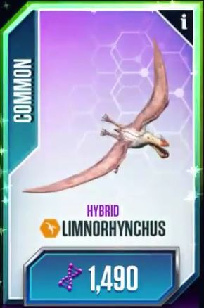 File:Imnorhynchus.jpg