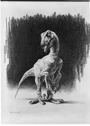 Raptor novel