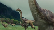 Gallimimus Flock in Valley