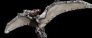 Jurassic world pteranodon by sonichedgehog2-d8jny24