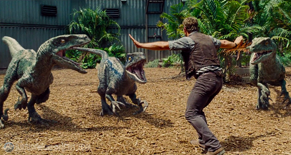 File:Owen-establishes-dominance-within-the-raptor-pack-in-this-new-jurassic-world-movie-clip.png