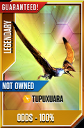 Tupuxuara Temporary Card