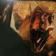 Raptor D5lxvwMW4AAox0-