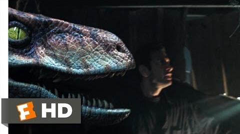 The Lost World Jurassic Park (6 10) Movie CLIP - Raptor vs