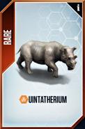 Uintatherium Card