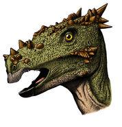 Dracorex tumblr netyb5zSVB1tp9utuo1 400