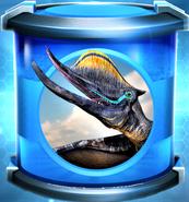 Dsungaripterus Incubator Rare