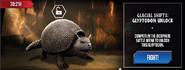 Glyptodon Available News