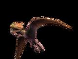 Dimodactylus