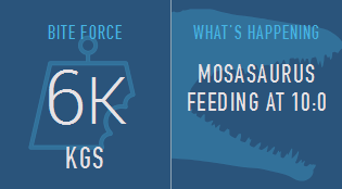 Mosasaurus Feeding Sidebar