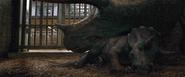 Trike Jurassic-World-3-animatronic