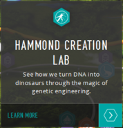 Hammond Lab map info