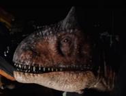 Carnotaurus JWFK