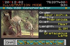 038 - conchoraptor