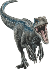 Fallen kingdom blue the velociraptor v2 by sonichedgehog2-dc8uw1o