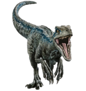 Fallen kingdom blue the velociraptor v2 by sonichedgehog2-dc8uw1o